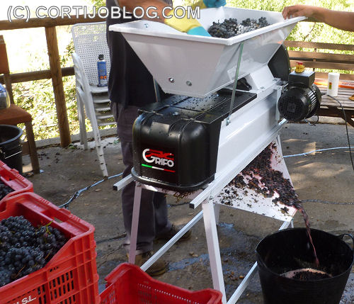 Mechanical grape crusher/destemmer