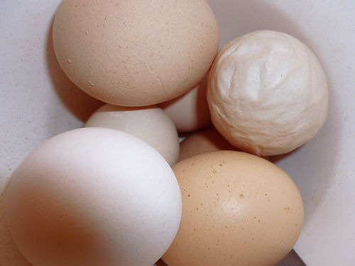 seven eggs