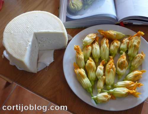 Courgette flowers stuffed with goat's cheese