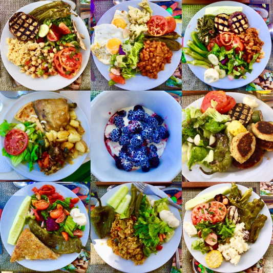 Photos of our vegetarian meals taken by Sin Mei.